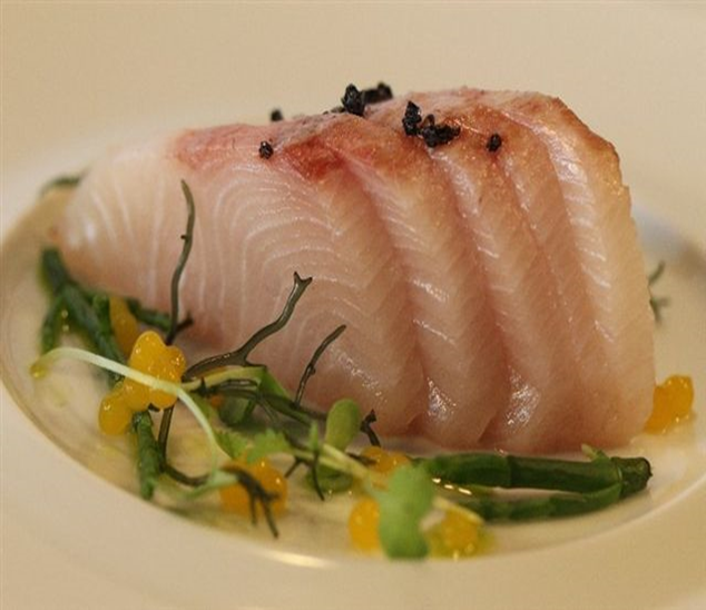 Japanese Hamachi Sashimi Hilo Fish Co